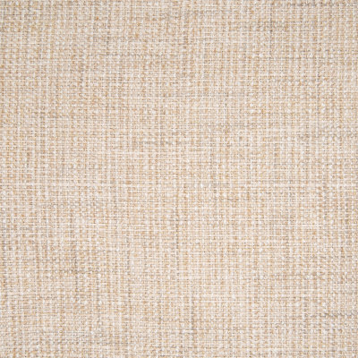 B6134 Oyster Fabric