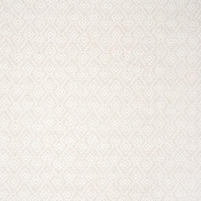 B6165 Vanilla Fabric