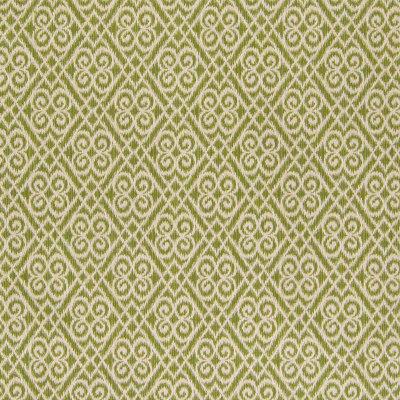 B6170 Key Lime Fabric