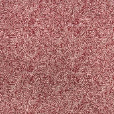 B6199 Chipotle Fabric