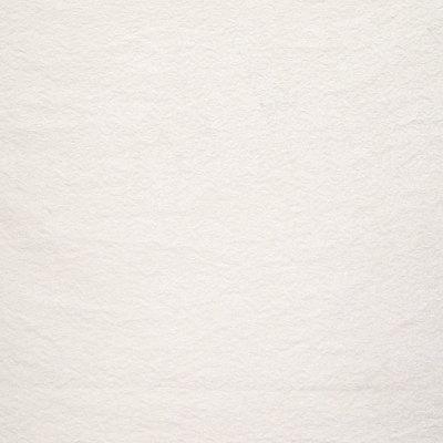 B6387 Sugarcane Fabric