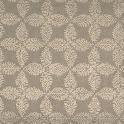 B6406 Mushroom Fabric