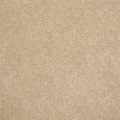 B6414 Sand Fabric
