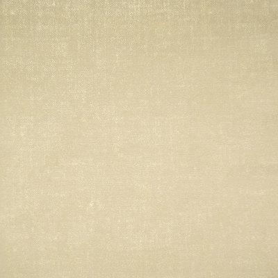 B6424 Glitz Fabric