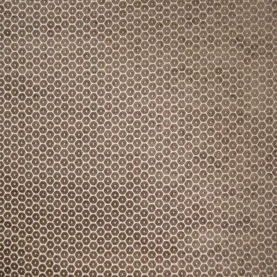B6438 Sepia Fabric