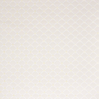 B6447 Vanilla Fabric