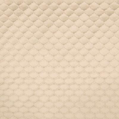B6453 Papyrus Fabric