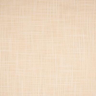 B6454 Daisy Fabric