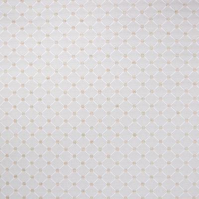 B6459 Bamboo Fabric