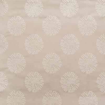 B6473 Latte Fabric