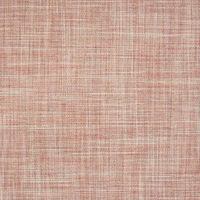 B6541 Carnation Fabric