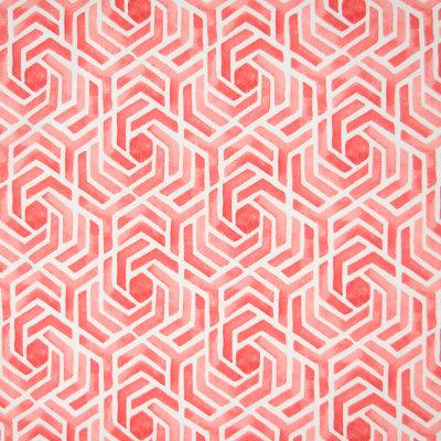 B6602 Pomegranate Fabric