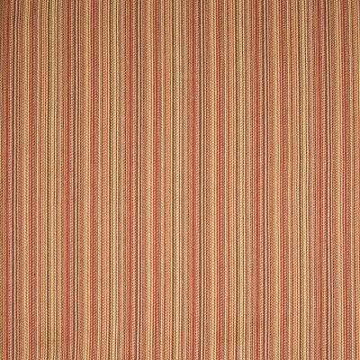 B6644 Chili Fabric