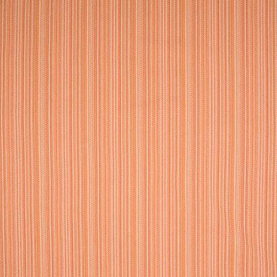 B6648 Persimmon Fabric