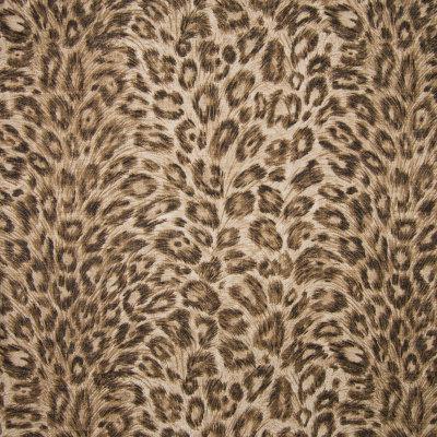 B6677 Rawhide Fabric