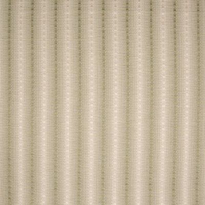 B6702 Kashmir Fabric