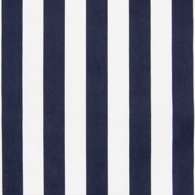 B6863 Nautical Fabric