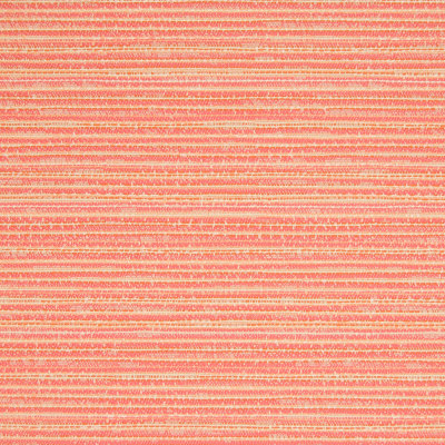 B6881 Coral Fabric