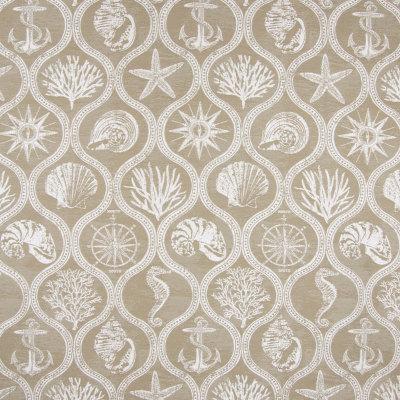 B6896 Driftwood Fabric