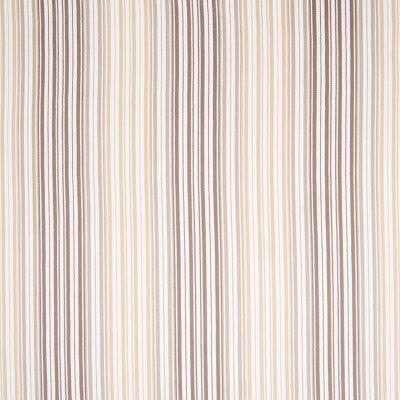 B6949 Sand Fabric