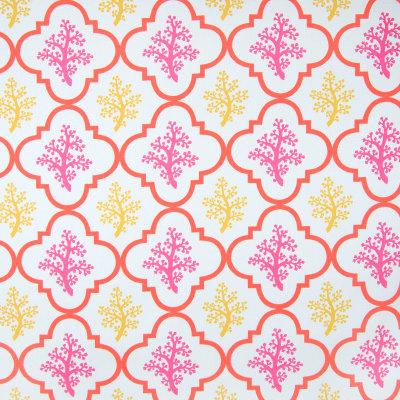 B6956 Primrose Fabric