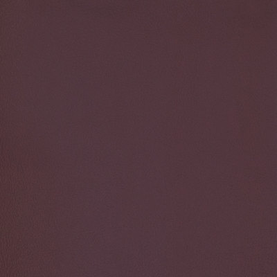 B7003 Vineyard Fabric