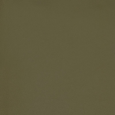 B7004 Olive Fabric