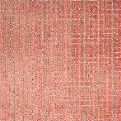 B7030 Penny Fabric