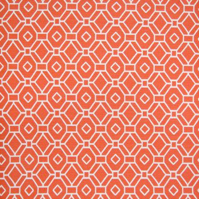 B7060 Spice Fabric