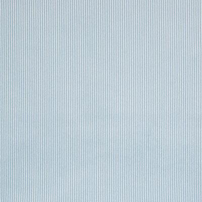 B7088 Sky Fabric