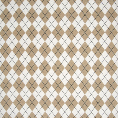 B7205 Peppercorn Fabric