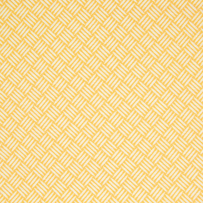 B7291 Citrine Fabric