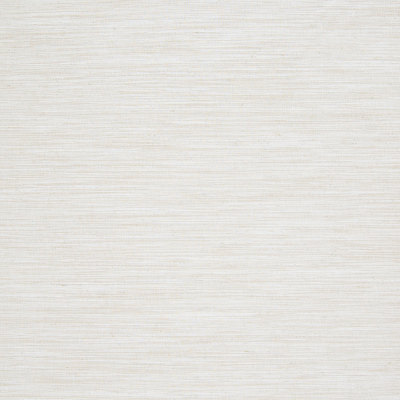 B7305 Raffia Fabric