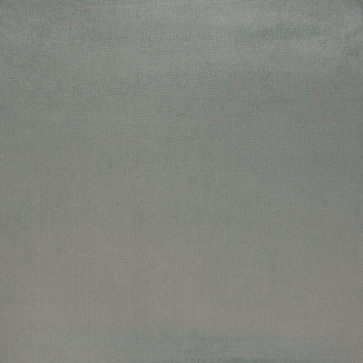 B7342 Dolphin Fabric