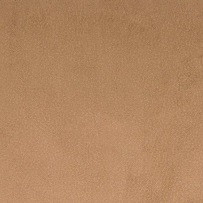 B7458 Vicuna Fabric