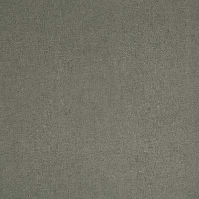 B7495 Caper Fabric