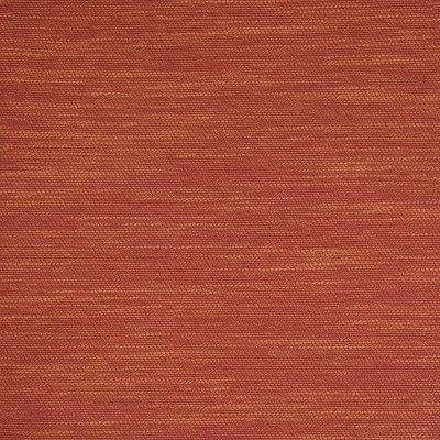 B7567 Spice Fabric