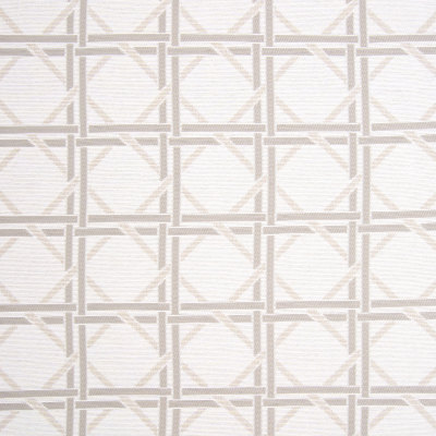 B7774 Neutral Fabric