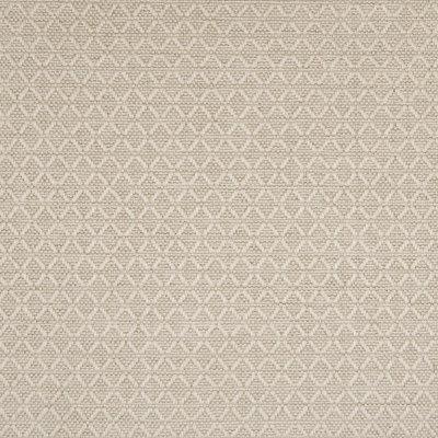 B7784 Havana Fabric