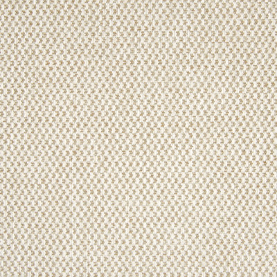 B7813 Truffle Fabric