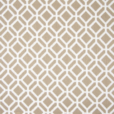 B7824 Rawhide Fabric