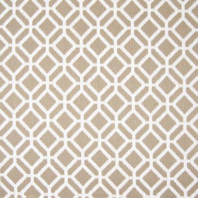 B7824 Rawhide Fabric
