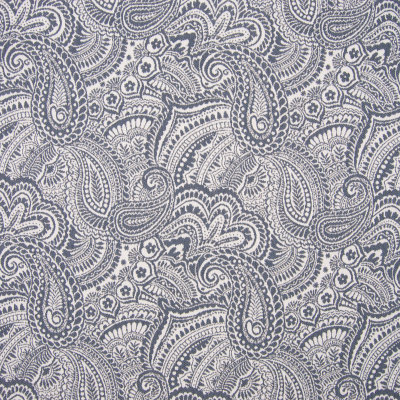 B7896 Robin Fabric