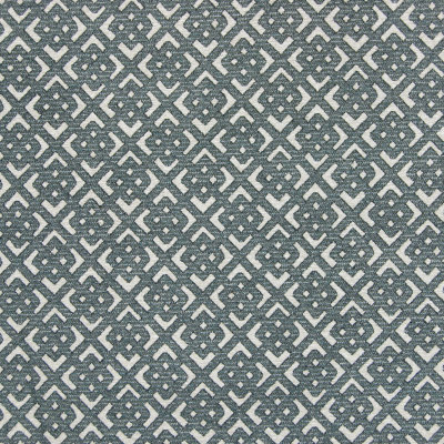 B7900 Flannel Fabric