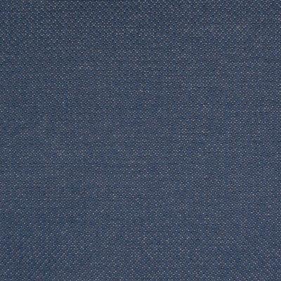 B7905 Indigo Fabric