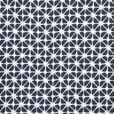 B7918 Indigo Fabric