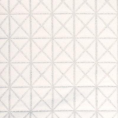 B8111 Silver Fabric