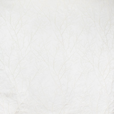 B8127 Linden Fabric