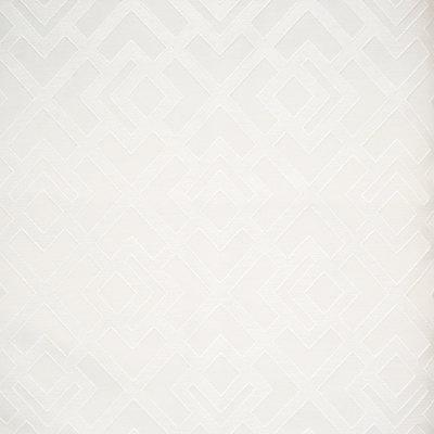 B8132 Bone Fabric