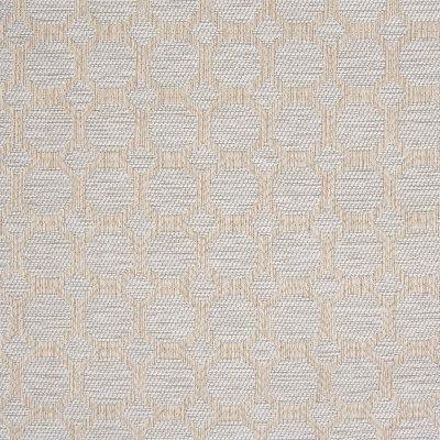 B8190 Fawn Fabric